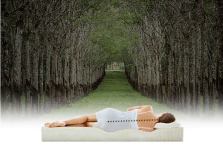 latex mattress of feelgood sleep systems
